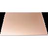 Placa Virgen de 80x120mm. Fibra de Vidrio.